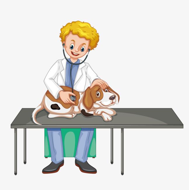 kiểm tra sức khoẻ cho chó